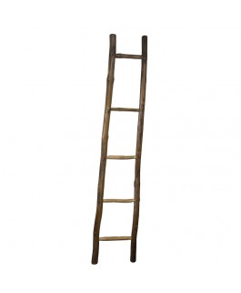 Natural Suar Wood Ladder